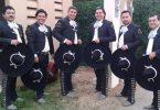 mariachi son de mi tierra